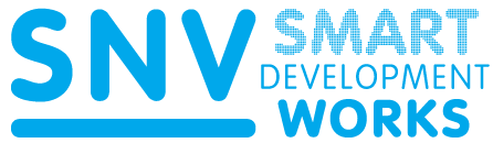 snv_smart_dev_works